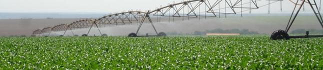 A Tecnologia a serviço da Agricultura